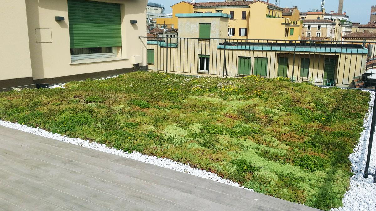 Junior garden progettazione e realizzazione giardini - Terrazzi e giardini pensili ...