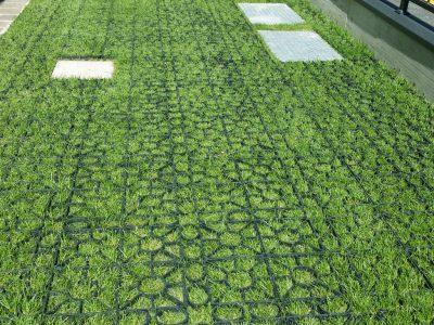 tappeto armato per giardino