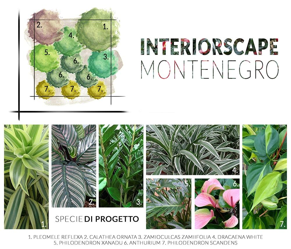 progetto-montenegro