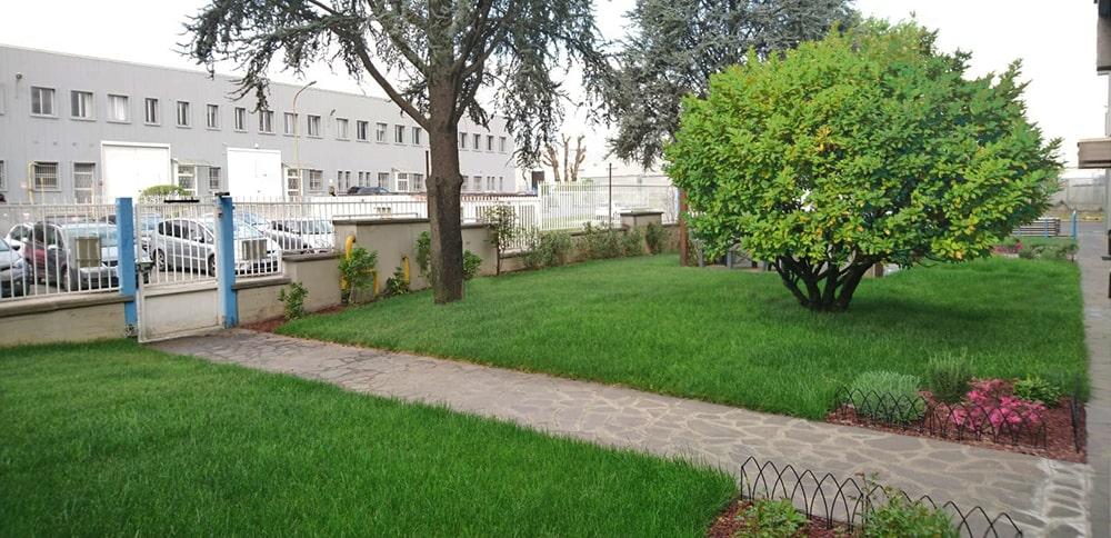 giardino-aziendale-sistemato