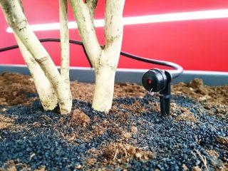 Irrigazione a goccia per terrazzo