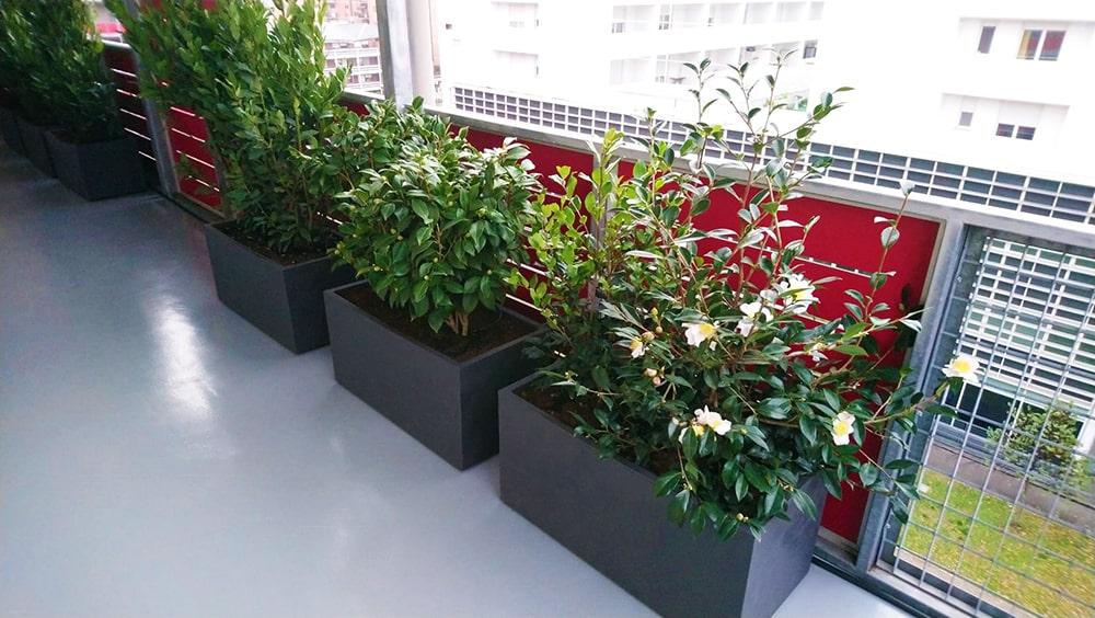 irrigazione-terrazzo